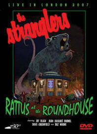 Rattus_roundhouse