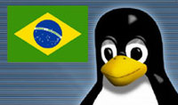 Penguinflag